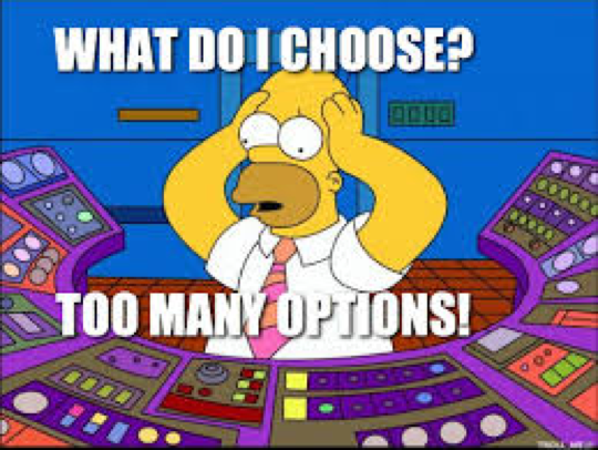 Homer Simpson too many options